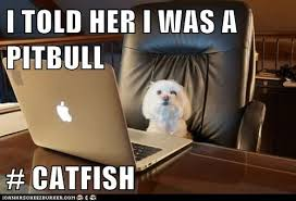 CATFISH joke
